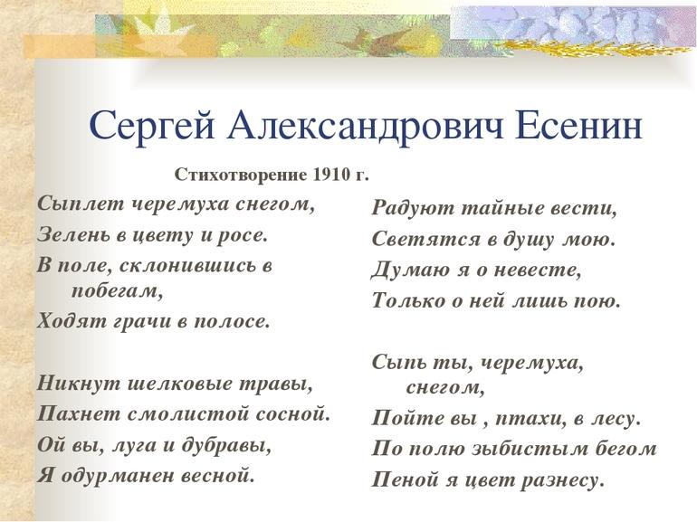 Стих «Сыплет черемуха снегом»