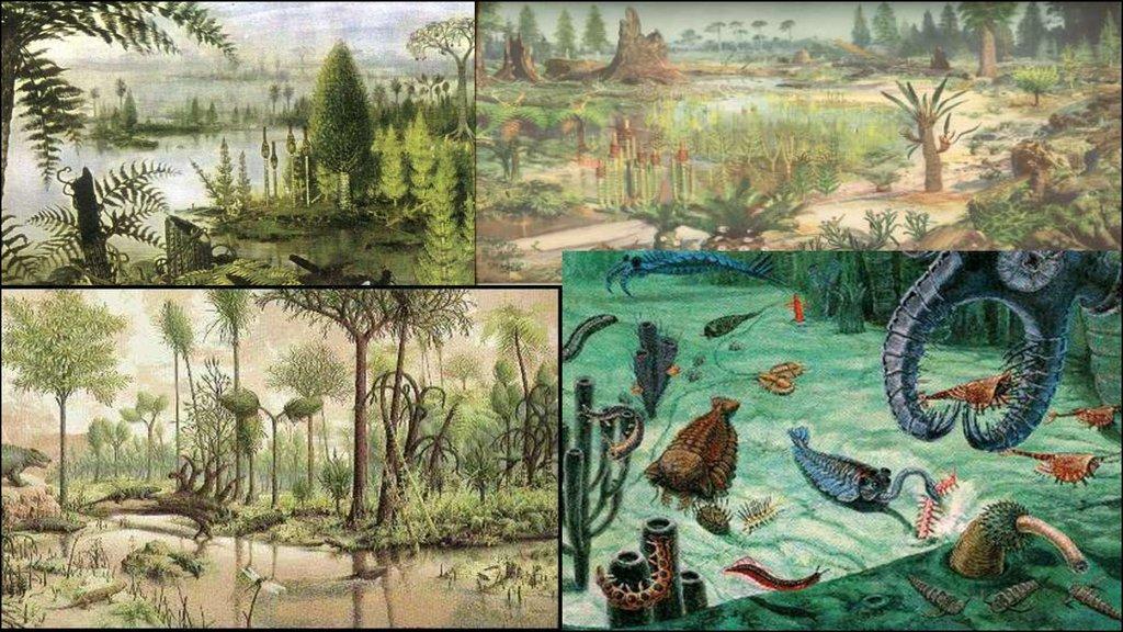 картинки с древними животными и растениями дом колесах, несмотря