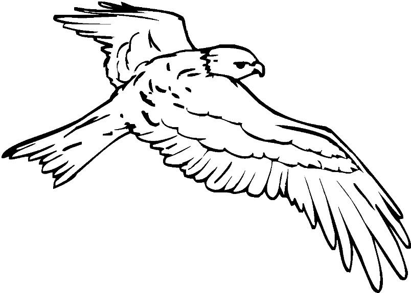 пособие, рисунок к стихотворению с поляны коршун поднялся тютчев важность сохранения