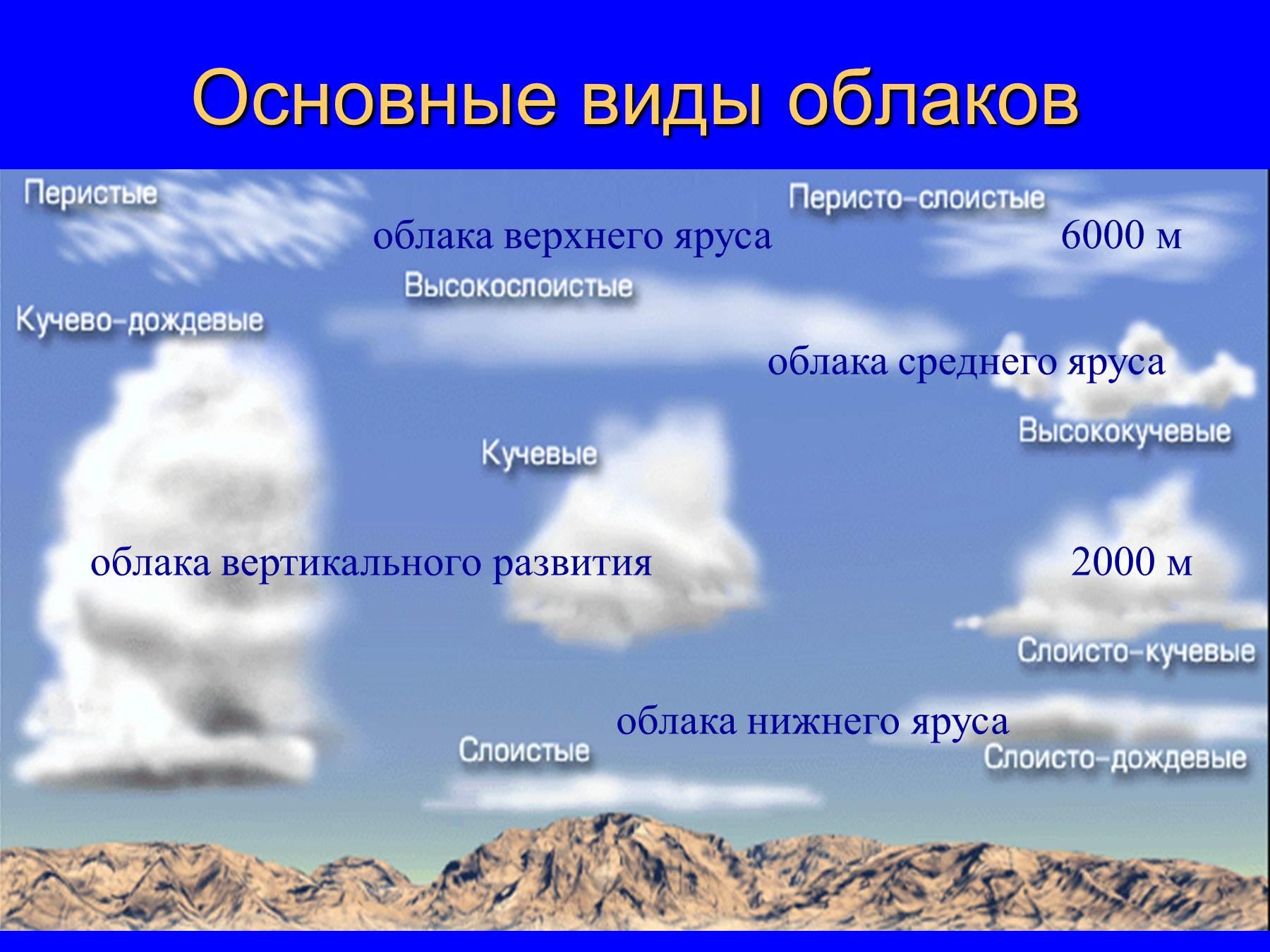 кожа, виды облаков картинки с названиями и описанием абанеро