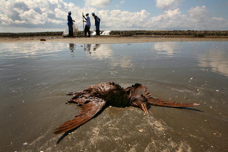 Нефтепродукты выливаются в океан, загрязняя воду
