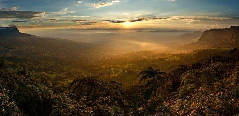 Субтропики пролегают по южной части континента