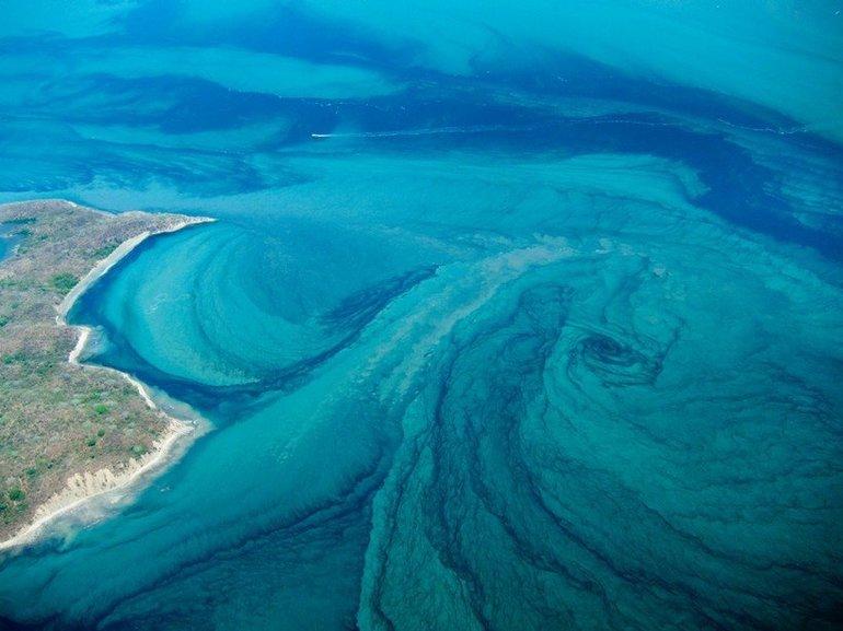 Вдоль побережья Тихого океана проходит Гольфстрим
