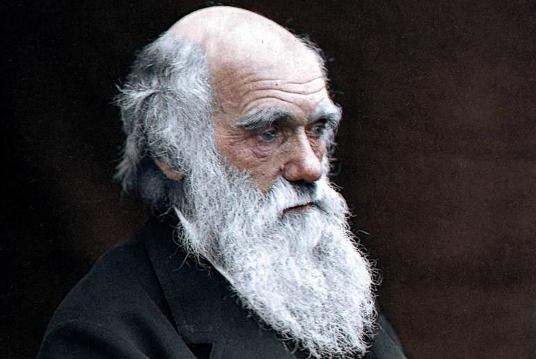Идеи Чарльза Дарвина