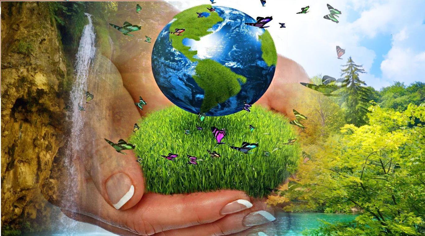 сохранить экологию картинки работники крайне