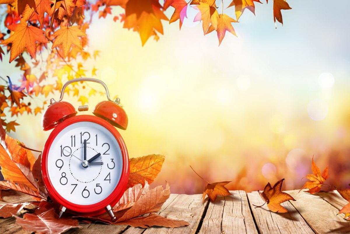 Осень в природе (окружающий мир, 2 класс): описание ...