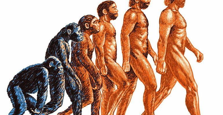 История человечества с самого начала (окружающий мир 4 класс)