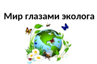 Мир глазами эколога (окружающий мир 4 класс)