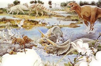 Млекопитающие произошли от