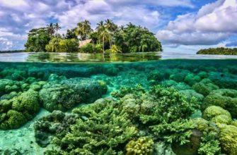Океания природа население (география 11 класс)