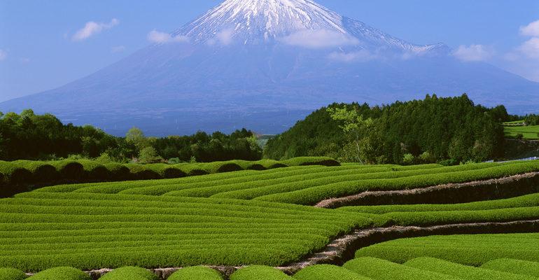 Природные ресурсы Японии