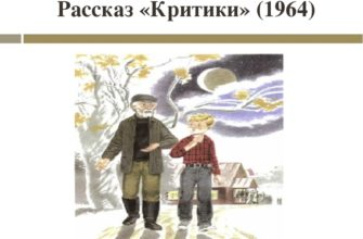 Рассказ Василия Шукшина «Критики»