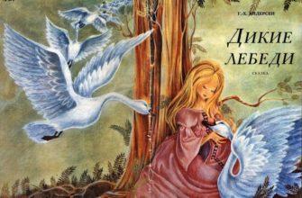 Сказка Андерсена «Дикие лебеди»