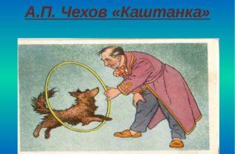 Сказка Чехова «Каштанка»