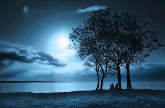 Бальмонт лунный свет