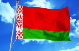 Белоруссия природные зоны
