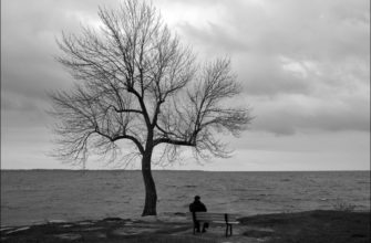 Мотив одиночества в лирике лермонтова