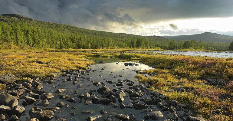 Полезные ископаемые северо восточной сибири