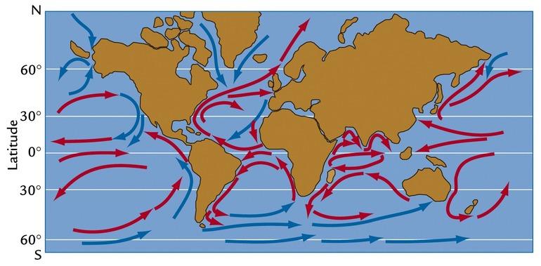 Поверхностные течения мирового океана