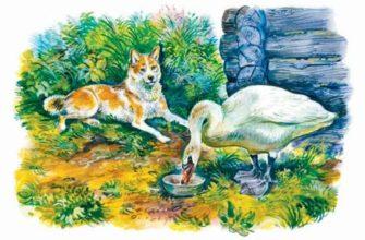 Приемыш читательский дневник мамин сибиряк