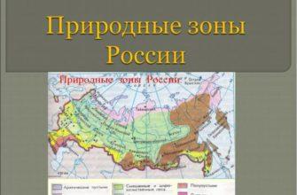Природные зоны центральной россии