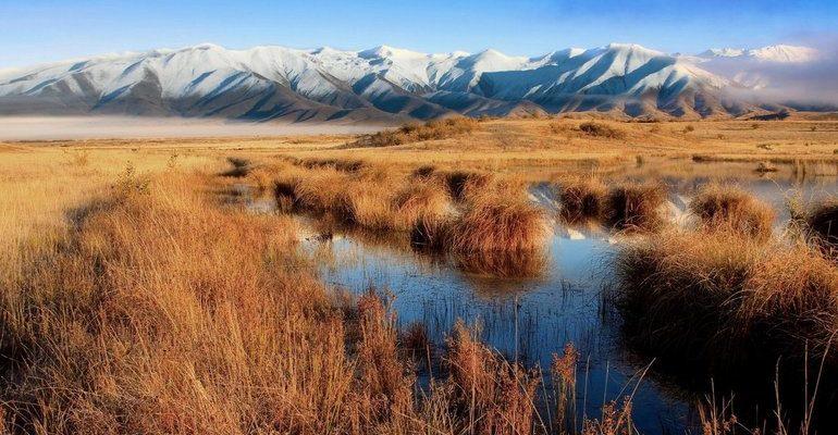 Природные зоны мелкосопочника Сарыарки