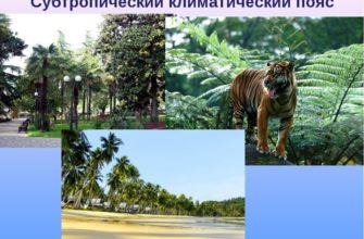 Природные зоны субтропического пояса
