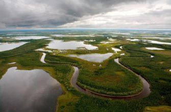 Природные зоны Ямала