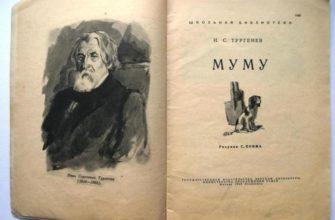 Рассказ Тургенева «Муму»