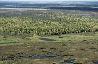 Рельеф Западно-Сибирской равнины