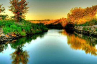 Режим рек