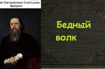 Сказка Салтыкова-Щедрина «Бедный волк»
