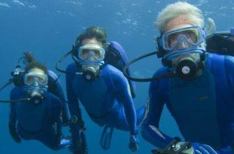 На сколько процентов изучен мировой океан