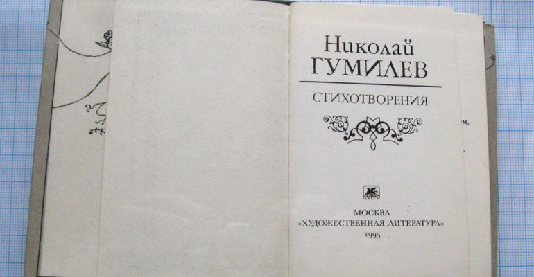 Стихи Гумилева «Я и вы»