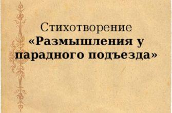 Стихотворение Некрасова «Размышления у парадного подъезда»