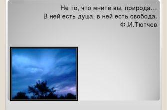 стихотворение Тютчева «Не то, что мните вы, природа»