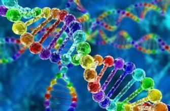 Взаимодействие неаллельных генов