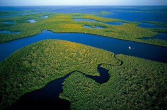 Абсолютная высота амазонской низменности