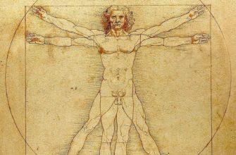 Человек - биосоциальное существо