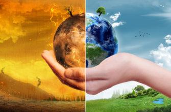 Экологические проблемы кратко