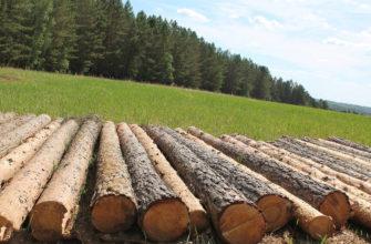 Факторы размещения лесной промышленности