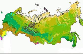 География таблица природных зон 7 класс