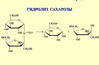 Гидролиза сахарозы является