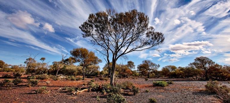 Климатические пояса австралии