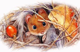 Мышонок пик читательский дневник