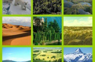 Природные зоны мира