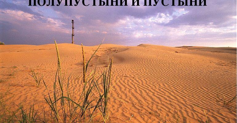 Пустыня и полупустыня