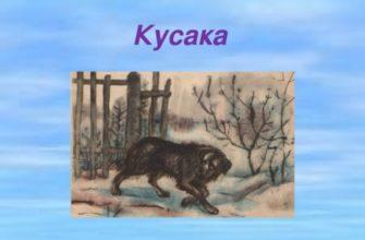 Рассказ Андреева «Кусака»