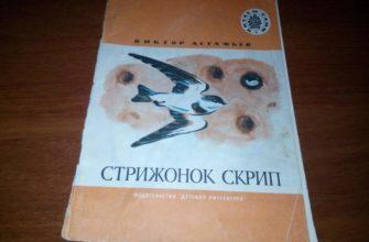 Рассказ Астафьева «Стрижонок Скрип»