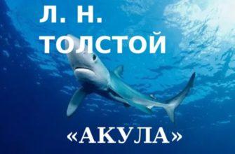 Рассказ Льва Толстого «Акула»